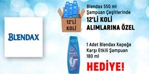 Blendax 550 ml Koli Alımlarında 180 ml Şampuan Hediye! kampanya resmi